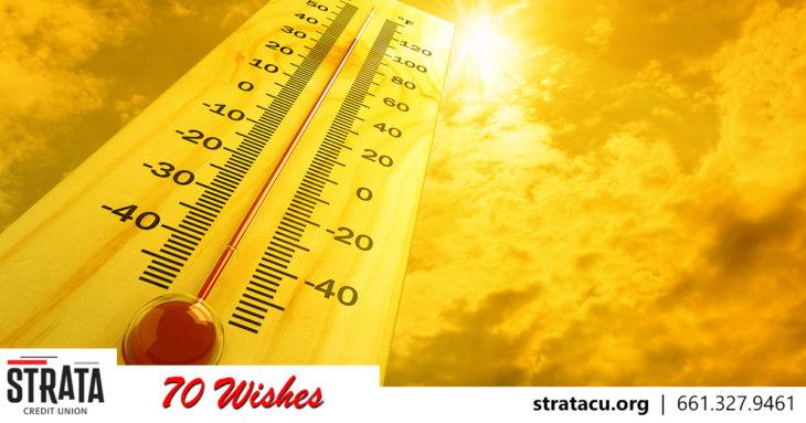 Wish 19 Heat