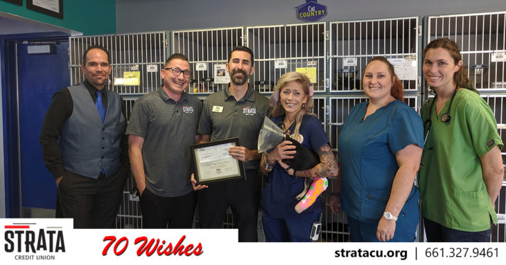 Kern County Animal Shelter Wish